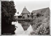 Linton Pond copy