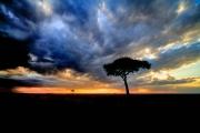 dynamic Mara sky